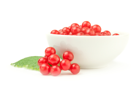 Viburnum with red berries isolated on a white background with clipping path Stock Photo