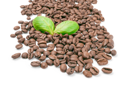 Coffee isolated on a white background cutout