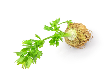 Fresh celery with root leaf isolated on white background cutout