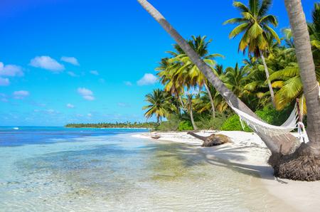 white sand beach: A hammock between palm trees on tropical beach. Stock Photo
