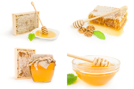 Set of honey bee on a white background clipping path Stock Photo