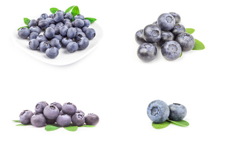 Set of bog bilberry isolated on a white background