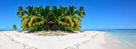Caribbean sea and palms.. Reklamní fotografie