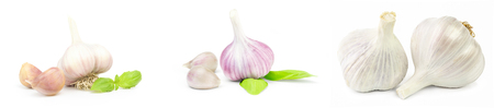 Set of Garlic isolated on a white background