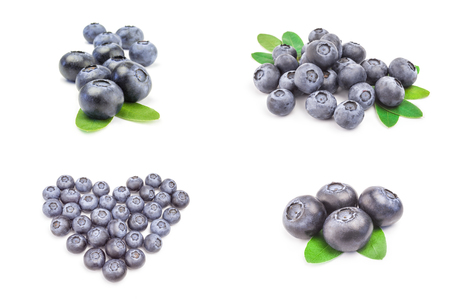 Collection of blueberry over a white background