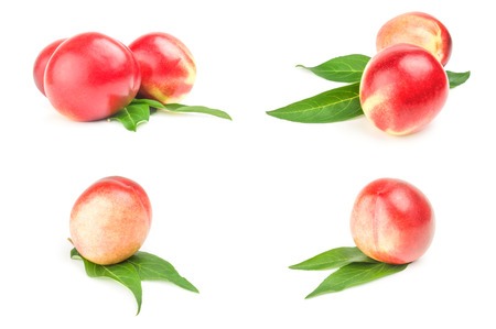 Collection of fresh peaches fruits on a isolated white background