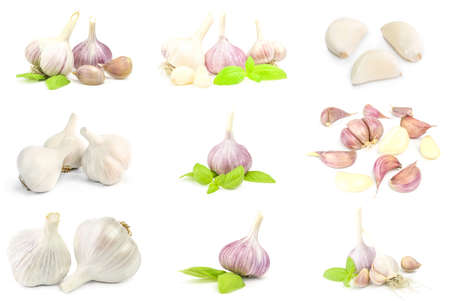 Collage of Garlic isolated on a white background