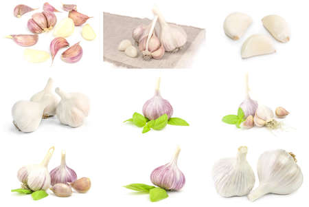 Collage of Garlic clove on a white background.