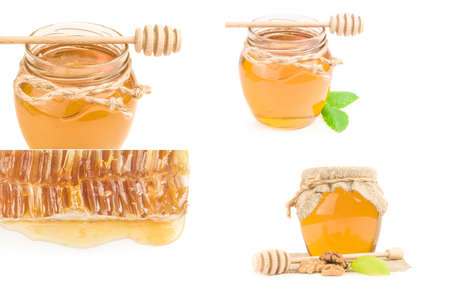 Collage of honey bee isolated on a white background cutout