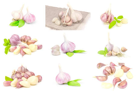 Collage of Garlic isolated on a white background cutout