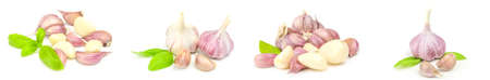 Collage of Garlic clove isolated on a white cutout