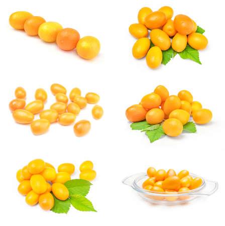 Set of cumquats over a white background