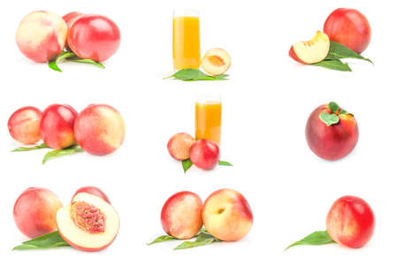 Collection of ripe peaches on a isolated white background Reklamní fotografie - 159583463