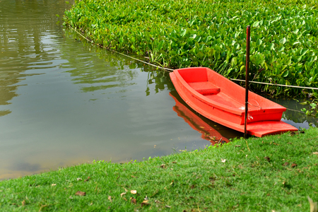 water hyacinth: the orange boat in lake with Water hyacinth