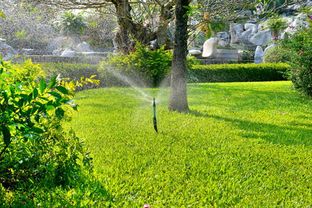 Sprinkler on lawn in residential setting with flower beds