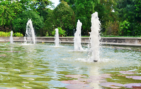 beauty fountain: fountain in the garden with pond