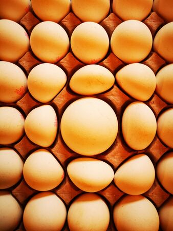 image large egg and misshapen eggs full top down view of tray or carton full of many raw eggs with creative imaginative
