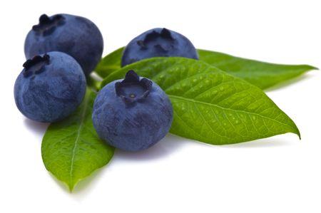 Blueberry on white background Stock Photo - 5254257