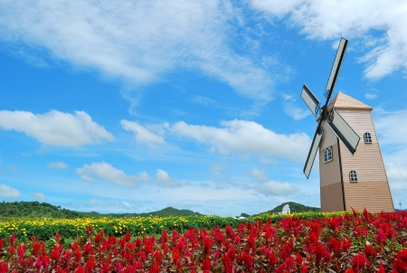Big Windmill met rode bloem en mooie hemel Stockfoto
