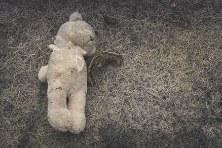 Old dirty bear doll abandoned on the grass., Lonely and sad concept. with copy space for text.