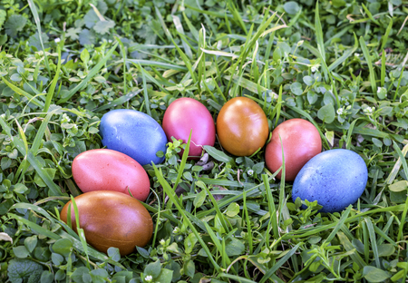 Colorful Easter eggs in grass, Easter hunt concept Фото со стока