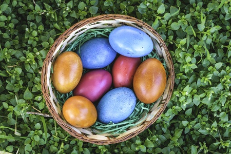 Colorful Easter eggs in a basket in green grass