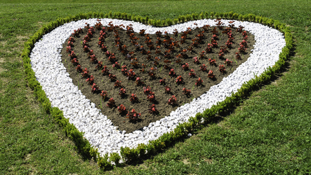Garden or backyard decoration with white rocks and flowers in a shape of a heart Фото со стока