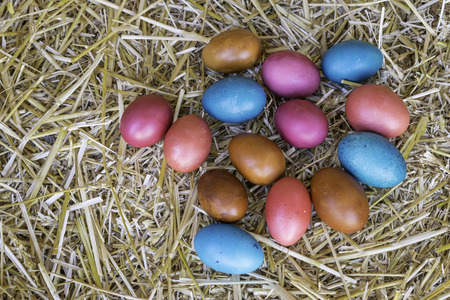 Colorful Easter eggs on a natural yellow wheat straw background