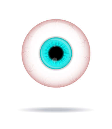 Realistic human eyeball. Eyeball with blue iris photo realistic vector illustration Stock Illustratie