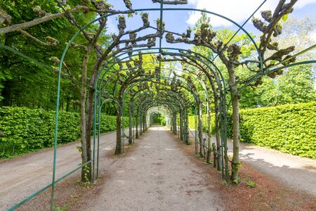 Arch alley in Sanssouci park, Potsdam, Germany