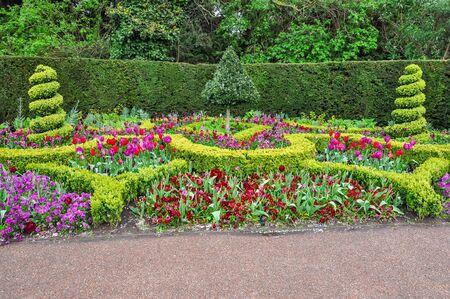 Spring flowers in Regent's park, London, UK