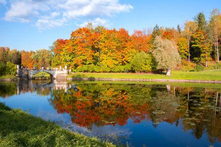 Autumn foliage in Pavlovsky park, Pavlovsk, Saint Petersburg, Russia