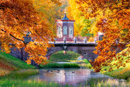Cross bridge in Alexander park in autumn, Pushkin (Tsarskoe Selo), St. Petersburg, Russia
