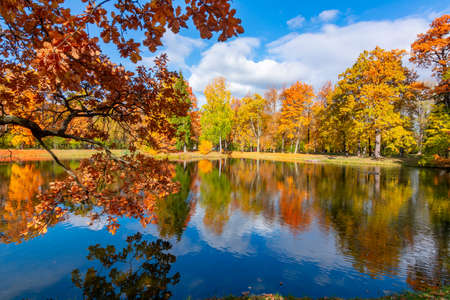 Alexander park in fall, Pushkin (Tsarskoe Selo), Saint Petersburg, Russia 免版税图像