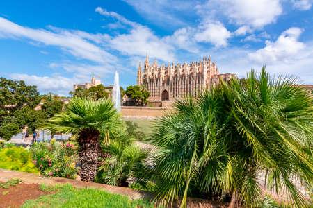 Cathedral of Santa Maria of Palma (La Seu) and palm trees, Palma de Mallorca, Spain