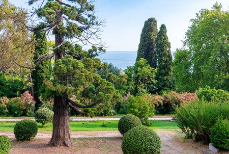 Landscape of Vorontsov palace park in southern Crimea 新闻类图片