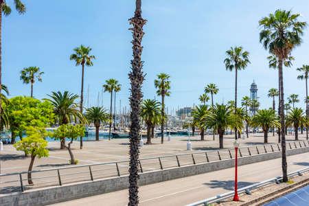 Barcelona sea promenade with palm trees, Spain