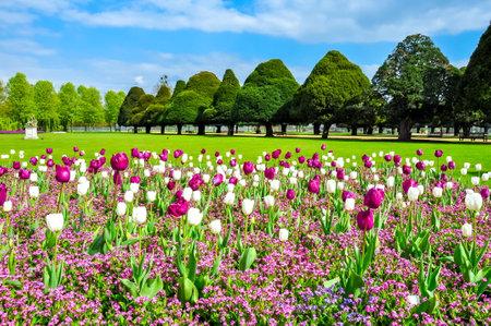 Hampton Court gardens in spring, London, UK