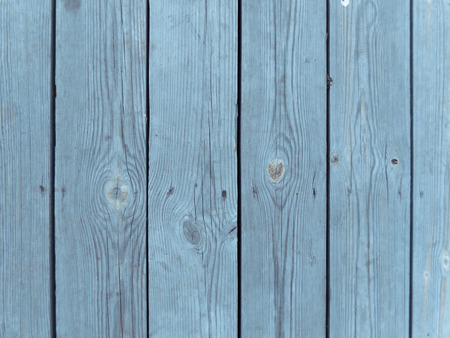 Wooden texture.  Tree bark.  Bark texture natural background.Close-up wooden background. Stock fotó