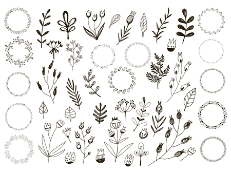 Big set of flowers and herbs vector collection leaf hand drawn vintage floral elements. Perfect for wedding invitations and birthday cards. Universal templates collection for trendy design.