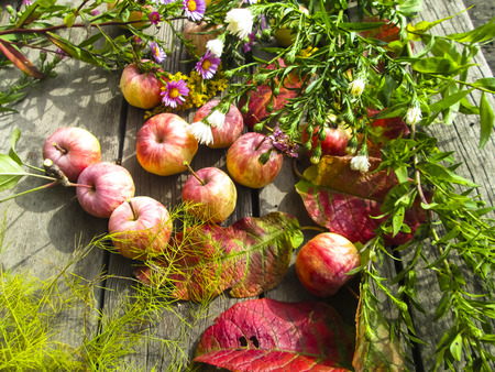 Beautiful photo with apples, red leaves, flowers calendula and herbs on a wooden background. Vintage art autumn background.