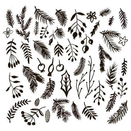 Set of hand drawn christmas floral elements.Hand drawn conifers: fir, larch, juniper, pine, spruce  in vector. Unique  hand drawn christmas  design  for invitation, banner, poster,  greeting card. Xmas.Vector illustration. Vettoriali