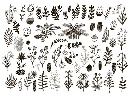 Big set of flowers and herbs. Vector collection leaf. Hand Drawn vintage floral elements.Perfect for wedding invitations and birthday cards.Universal templates collection for trendy design.