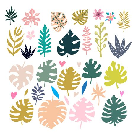 Beautiful big  set with tropical palm leaves, exotic  flowers. Cute  vector elements in flat cartoon style. For your design, posters, textile, wedding invitation, business products.  Vector illustration.
