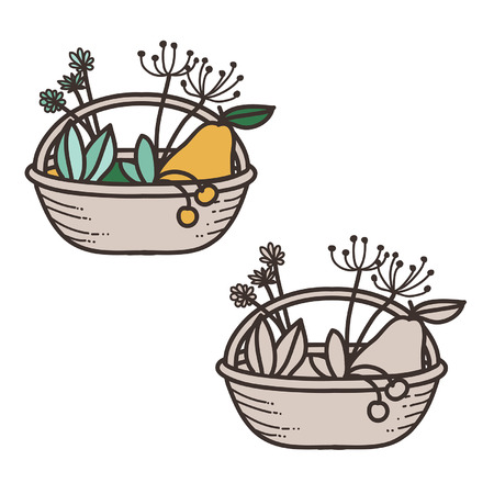 Vector basket with fruits and plant Vector