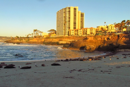 shorelines: View of the Coast at Sunset