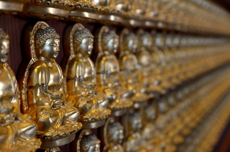 Many small Buddha statue on the wall at chinese temple, Thailand Stock Photo - 15018569
