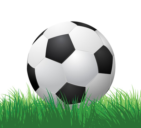 soccer ball on green grass  vector illustration EPS10