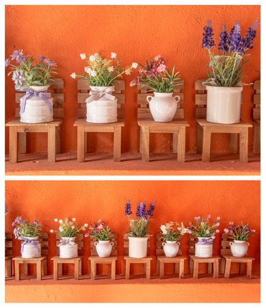 bloem in pot Stockfoto