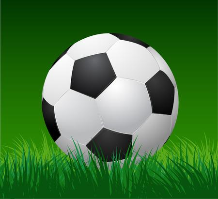 voetbal bal op groen gras.